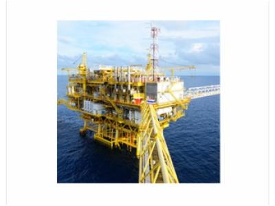 煤、石油矿质构造-煤、石油矿质构造