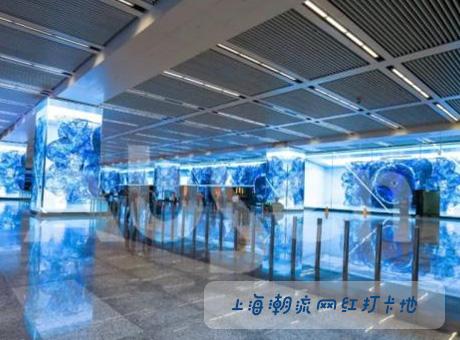 上海潮流网红打卡地,艾比森1800㎡创意大屏亮相虹桥枢纽