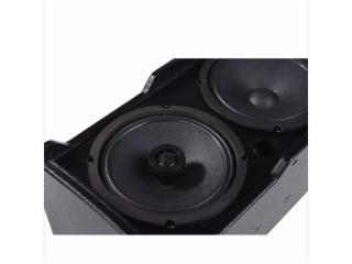專業擴聲音箱-