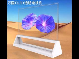 55EW1-wango萬國OLED透明屏廣告機